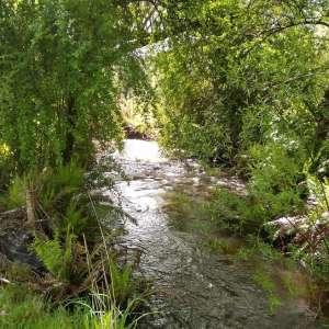 Shundahai, Central Highlands Tasmania