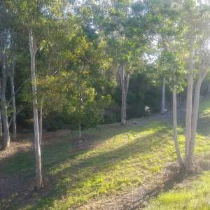 Green Acres Creekside Camping