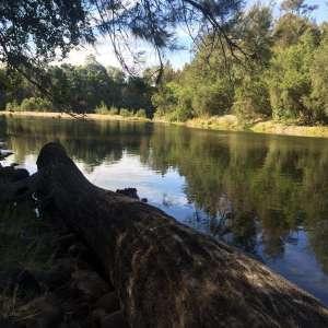 Macleay River Camp