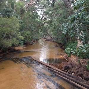 Bridge Creek Bush Camp and Didgeridoo Eco Tour