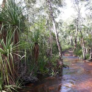 Samson Creek