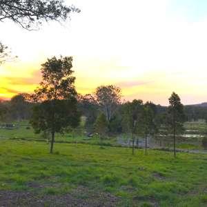 Buranga Farm