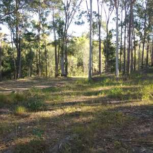 Cooloola Way Mountain Stay