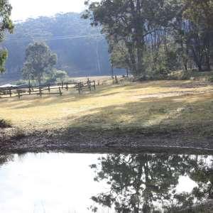 Kangarutha Farm