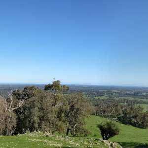 Jacaranda Hill Farm