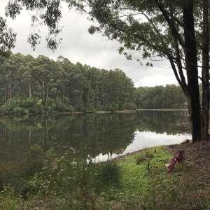 On the Lake at Karri Lane