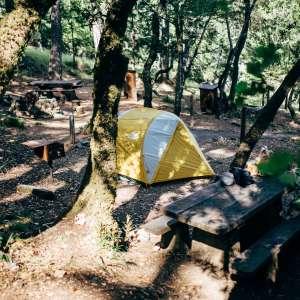 Mount Tamalpais State Park