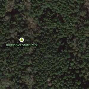 Bogachiel State Park