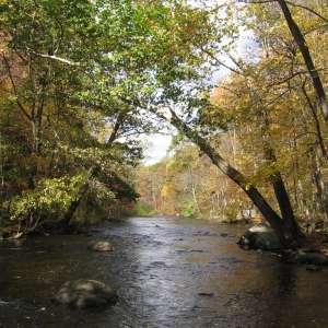 Stephens State Park