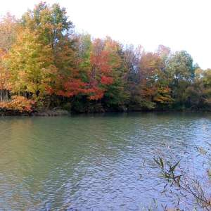 Alum Creek State Park