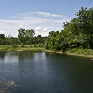 Kickapoo State Recreation Area