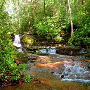 Chattahoochee-Oconee National Forest