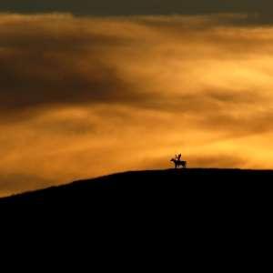 Wilson State Park KS