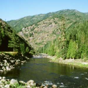 Nez Perce-Clearwater National Forests