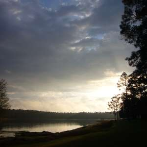 Conecuh National Forest