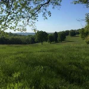 Tomlinson Run State Park