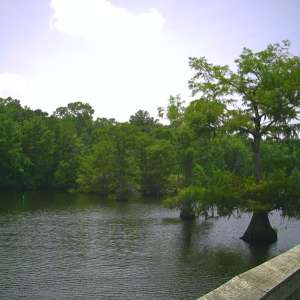Chicot State Park