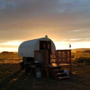 Serenity Sheep Farm Stay