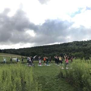 ZiegenVine Homestead - Camping