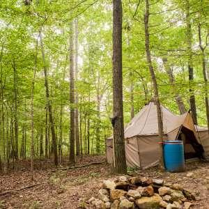Indian Springs Woods