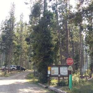 Bridger National Forest
