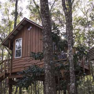 Treehouse Cabin Retreat