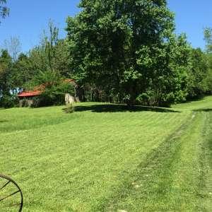 MoonLight Grove Farm