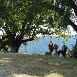 Mountain Top Barn camping