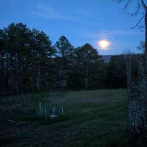 Wild Woods Scenic Camp