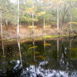 Suwannee River Camping Retreat