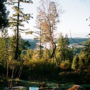 South Facing Ridge With Views