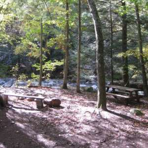 Abrams Creek Campground Retreat