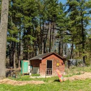 Barakah Heritage Farm