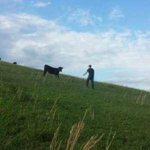 The Blue Horn Farmstay Getaway