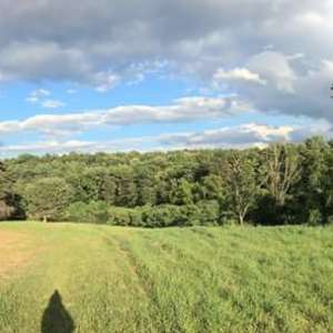 Stuart H.'s Land