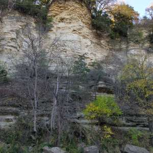 Bluff Hollow on the Root River