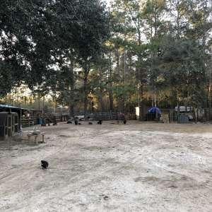 Hurricane Creek Farm
