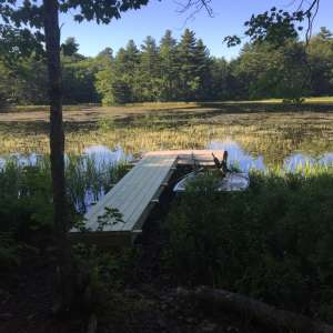 Pitcher Pond campsite