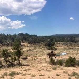 The Rockin G Ranch