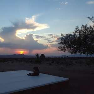 Spectacular sunset views.
