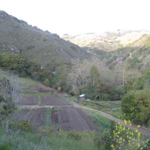 Charan Springs Farm