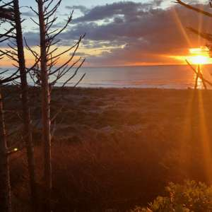 Wild WA Coast Lookout