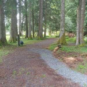 Wilderness Path