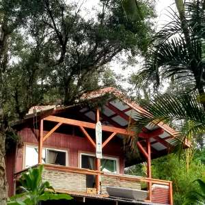Black Sands Jungle Cabin