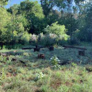 Casita on Sapillo Creek Escape