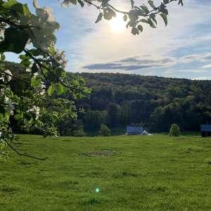 Milldale Farm