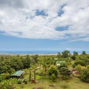 Banyan Tree Sanctuary Hawaii