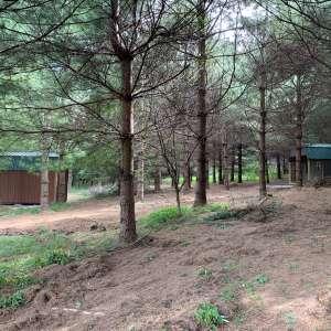 Camp Karuga