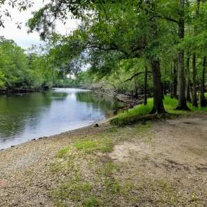 Black River Camping Grounds