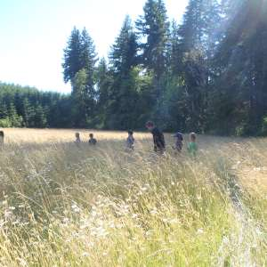 Lost Valley Farm Camp